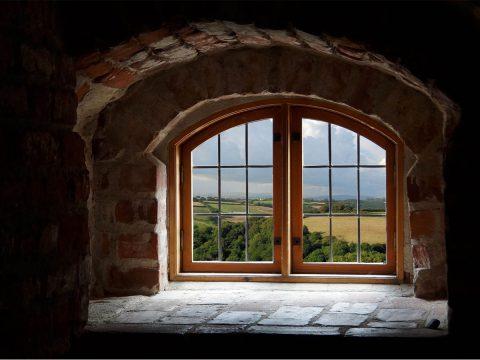 Kij ci w okno! Okno Overtona — rzecz o niedostrzegalnym zaszczepianiu idei